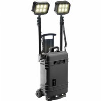 9460RS Black Remote Area Lighting System, 2 lamp heads on masts, 6 LEDs per head